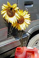 Cuida tu planeta... Como hacer biodiesel.